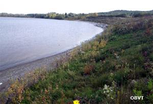 Reprise des boutures de saules et des lits de branche en bordure du lac Témiscamingue et mortalité des boutures de saule en milieu de pente 3 ans après les aménagements (ferme Drochers)