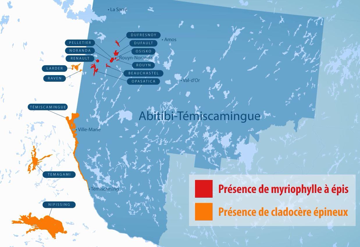 Carte de la répartition des espèces exotiques envahissantes aquatiques présentes en Abitibi-Témiscamingue
