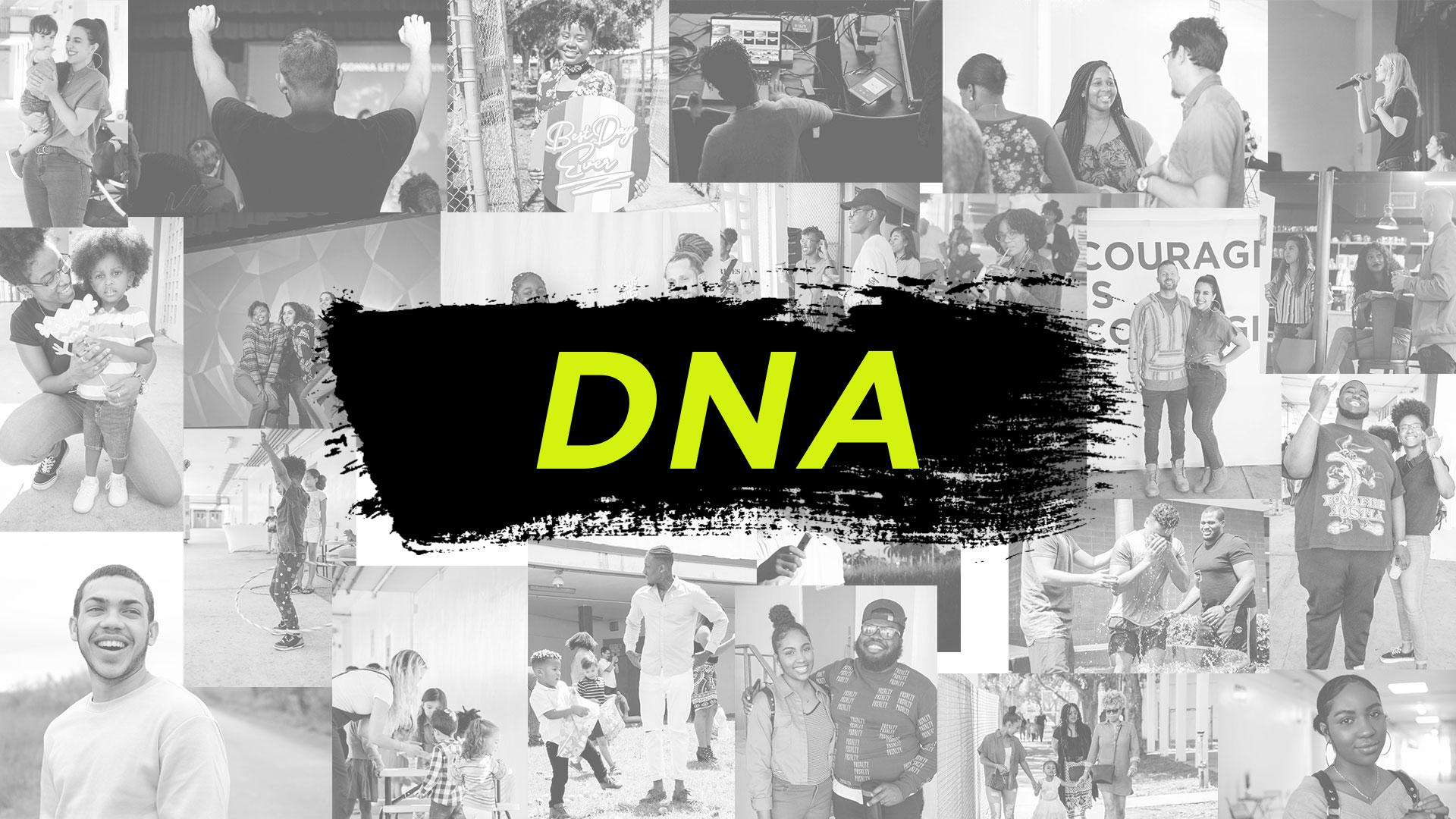 DNAScreen.jpg