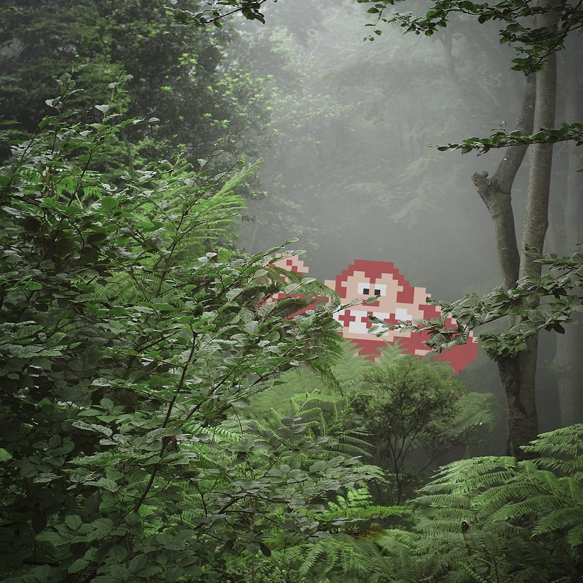 Gorilla In The Mist -