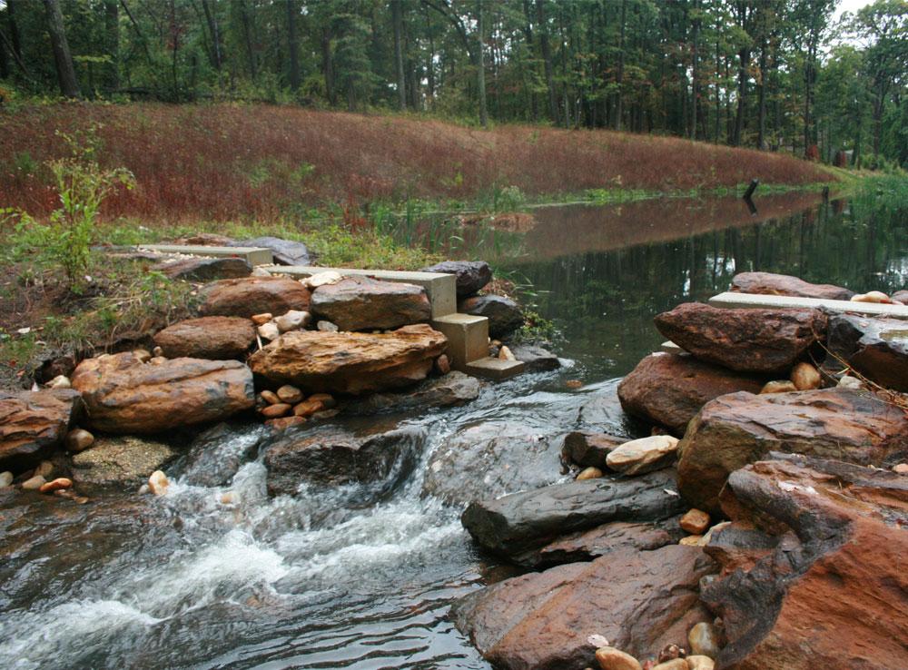 watershed-1.jpg