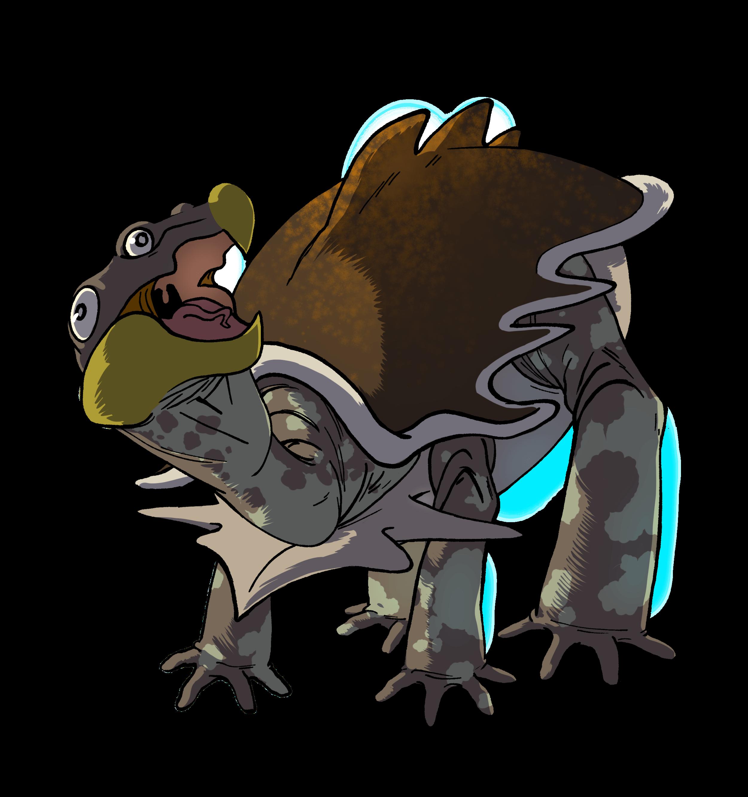 Kordata Turtle | Illustration by Casey Cookson