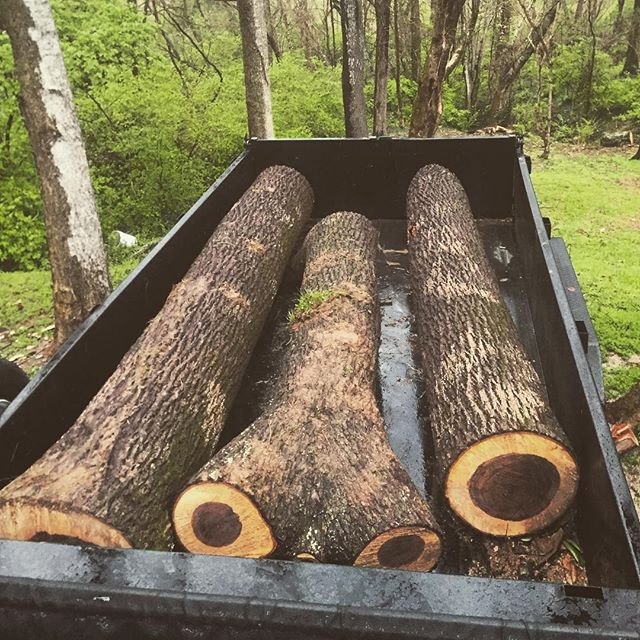 This tree was a landmark on a Tennessee family farm and will become furniture for the family.  Glad we can help preserve history. Otherwise, the tree would have been cleared for development. #goodpeople #goodwork #chopnashville