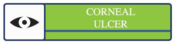 Cochrane-disease-button-CORNULC.jpg