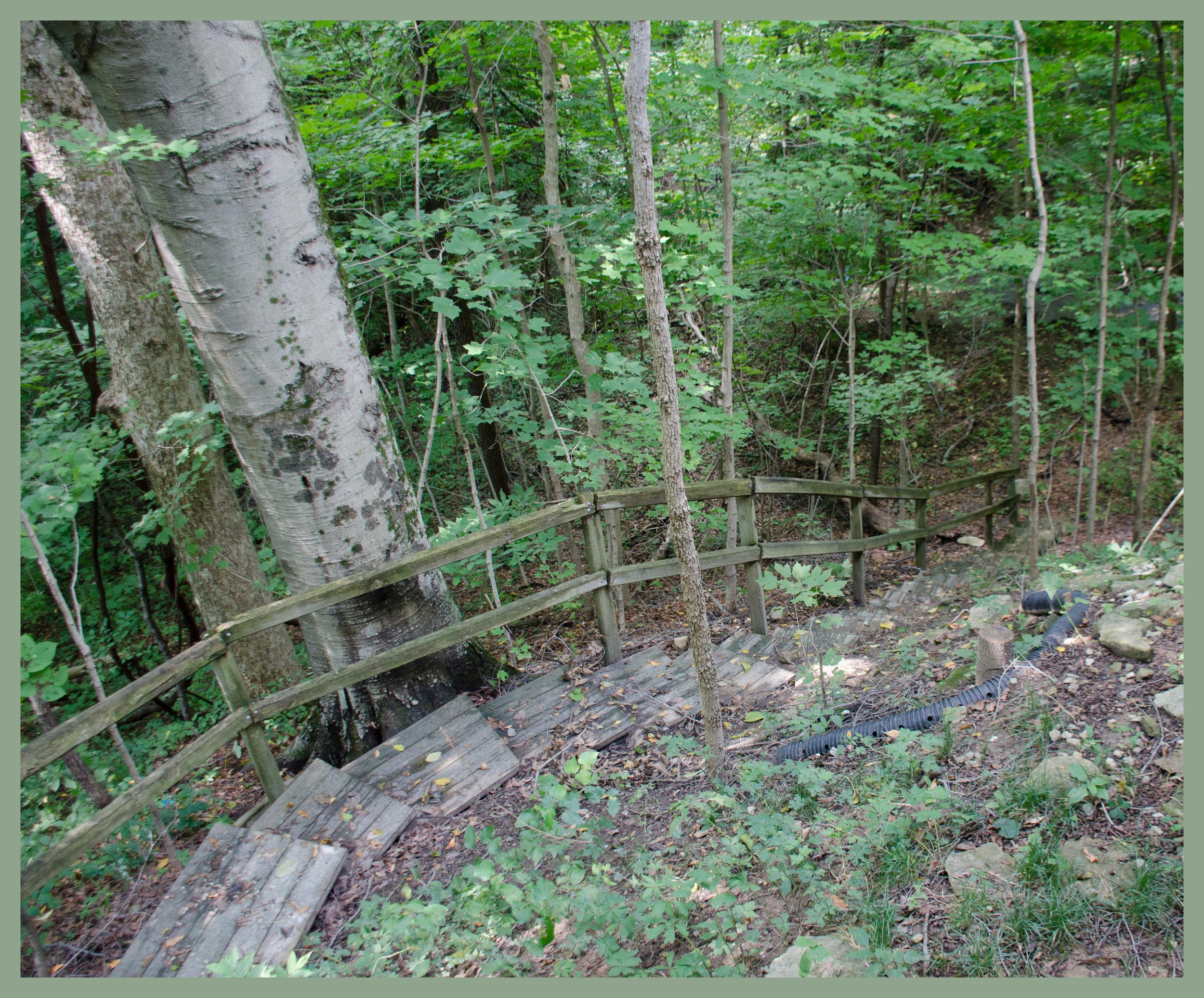 cabin steps 2.jpg