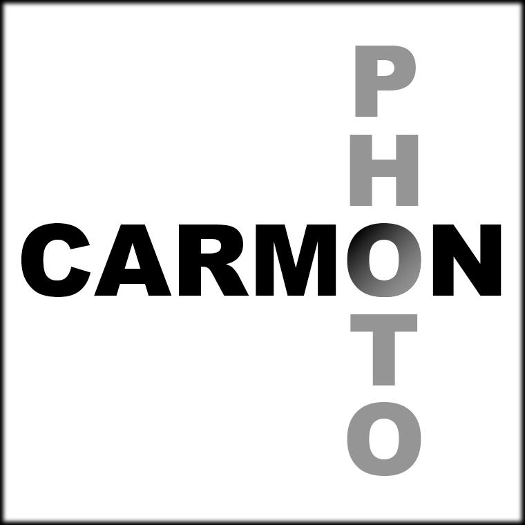 CARMON1framed.jpg