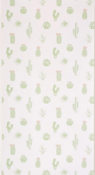 Copy of Cactus wallpaper