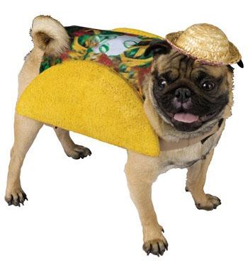 taco-dog-costume.jpg