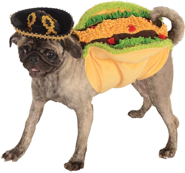 Amazing Funny Taco Dog Costume!