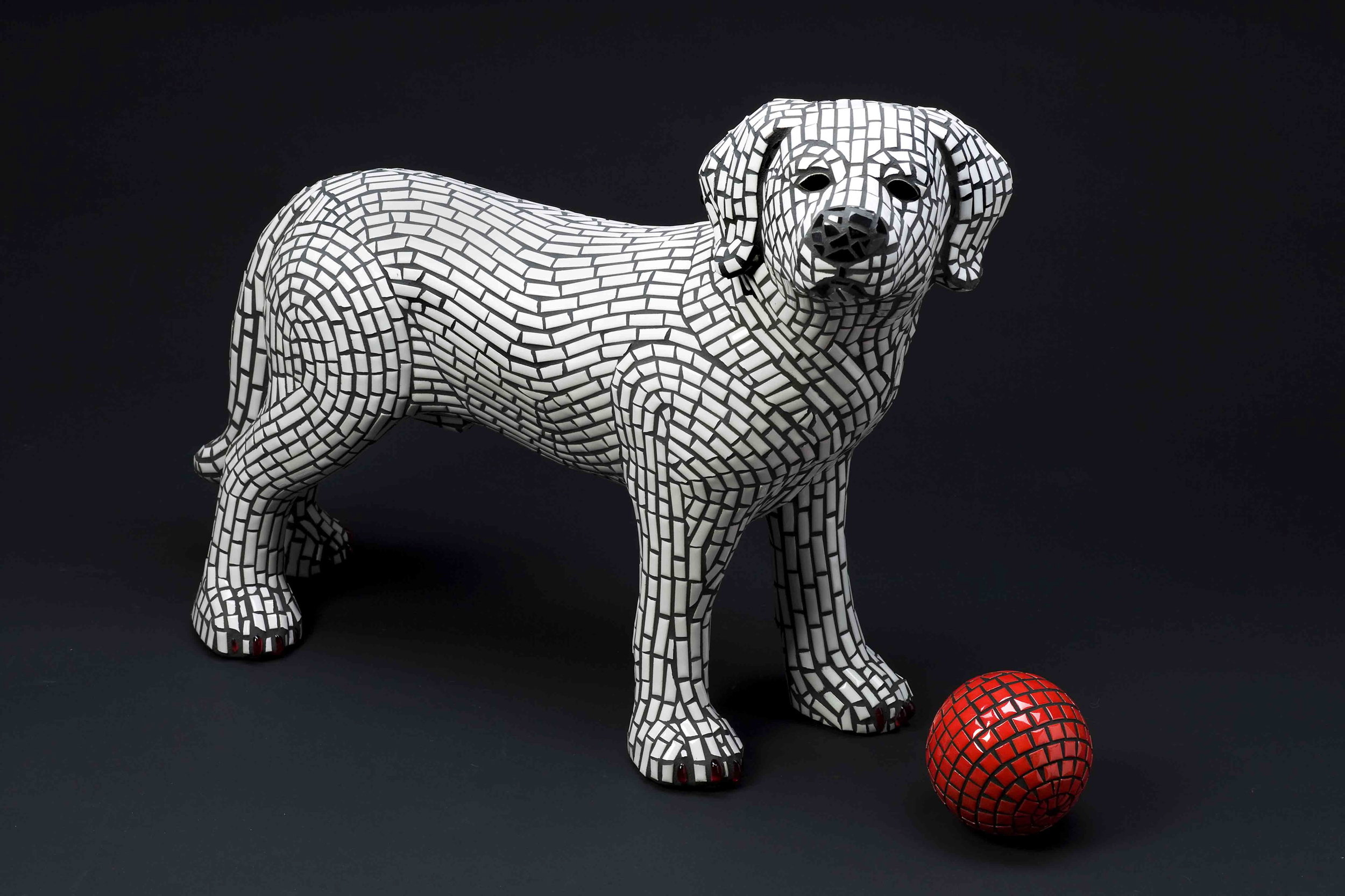 The Fetch Dog - currently for sale