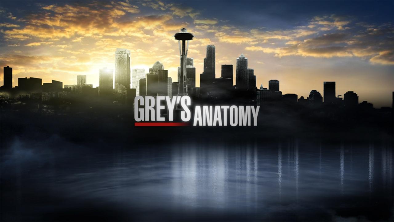 2006:2007-GreysAnatomy.jpg