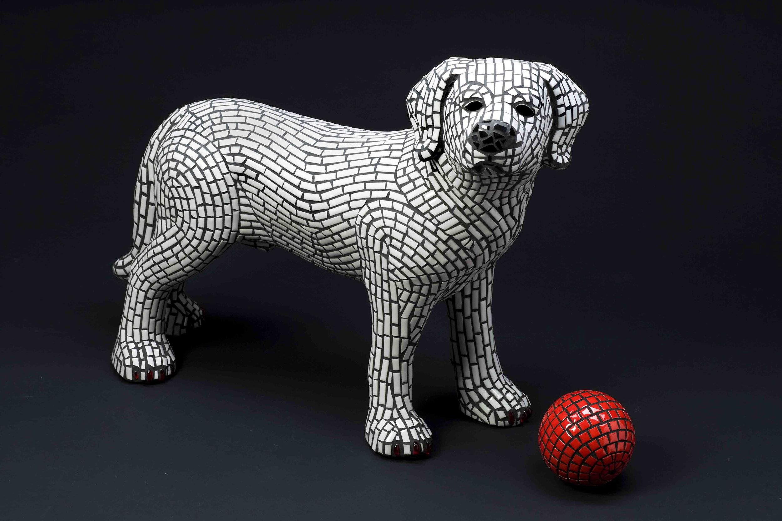 DOG-Fetch-LG.jpg