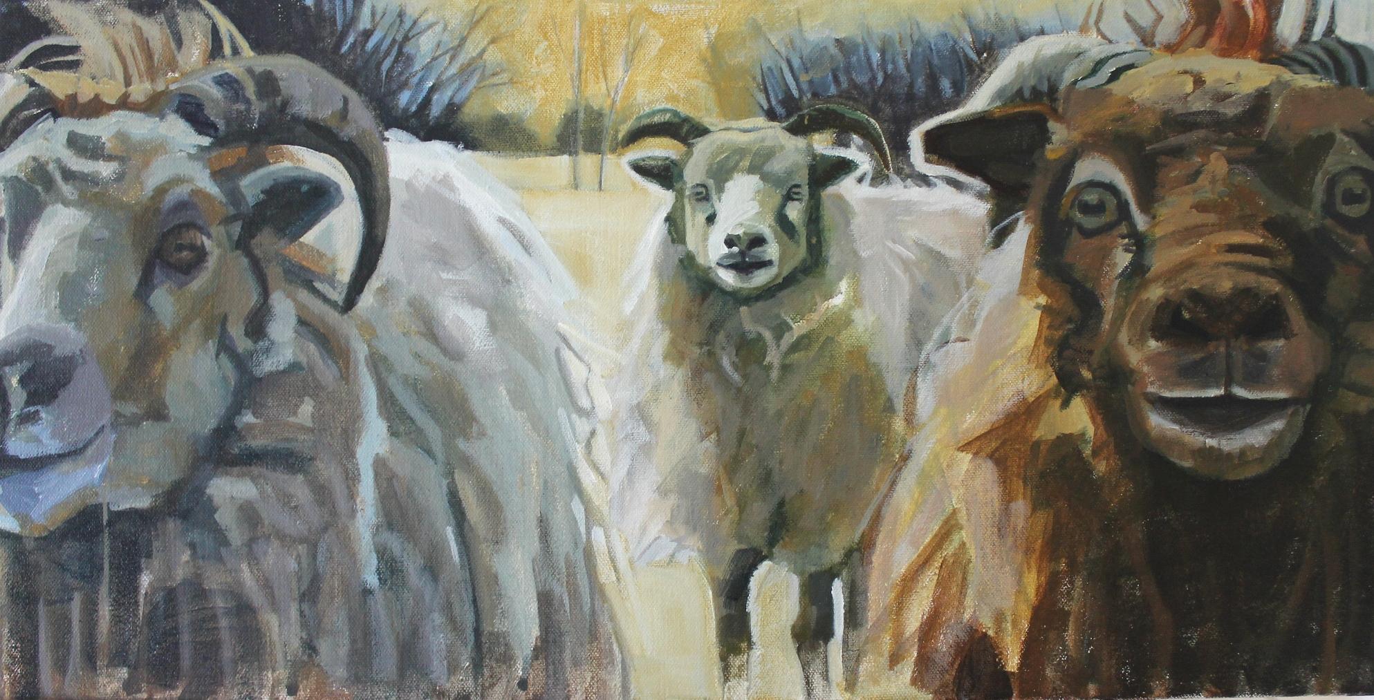 Three Sheep 12x24.JPG
