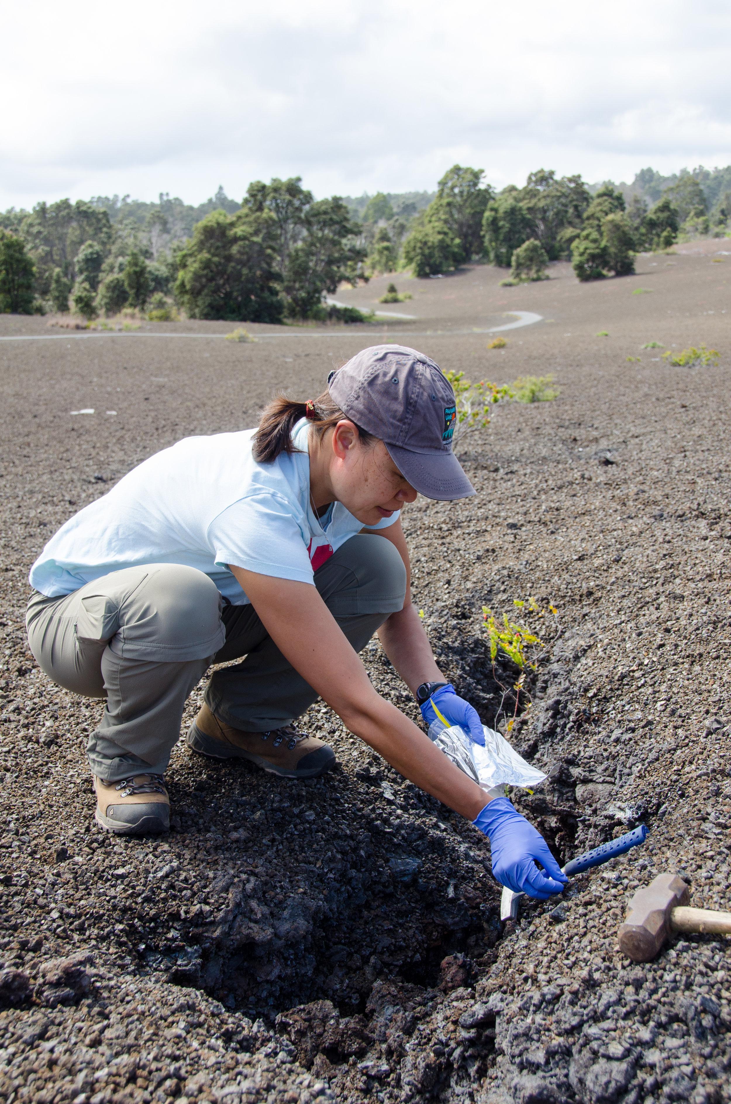 Field sampling in the Kilauea Iki region, 2015