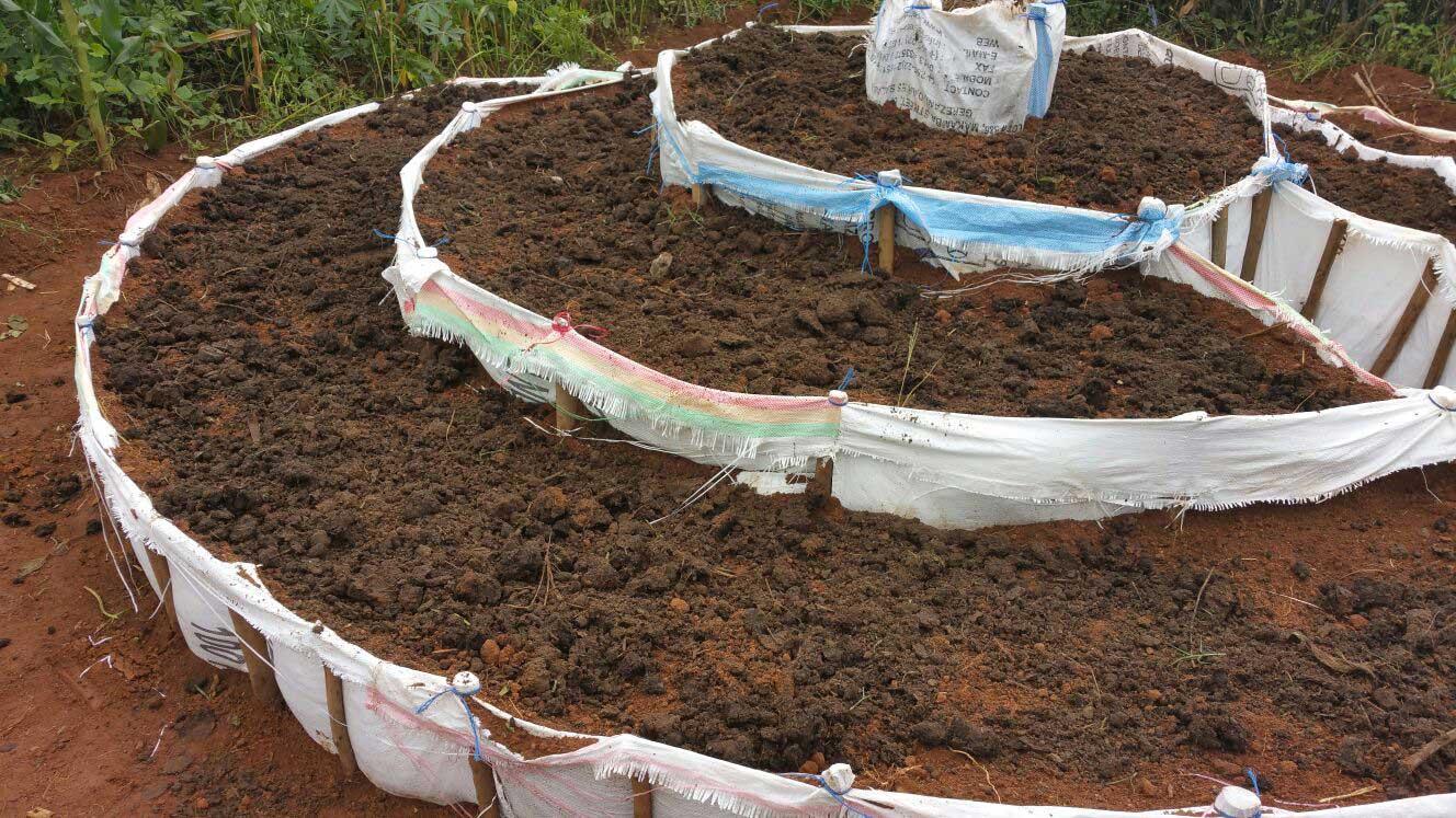 rwanda_new_dec_002.jpg