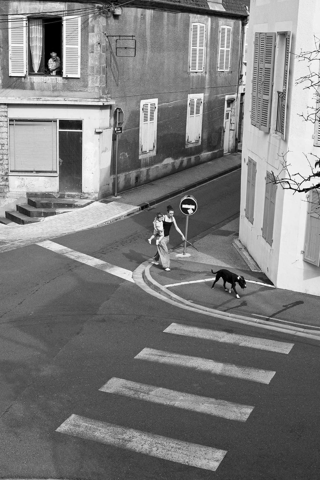 curiosité-Nevers-juin-2010.jpg