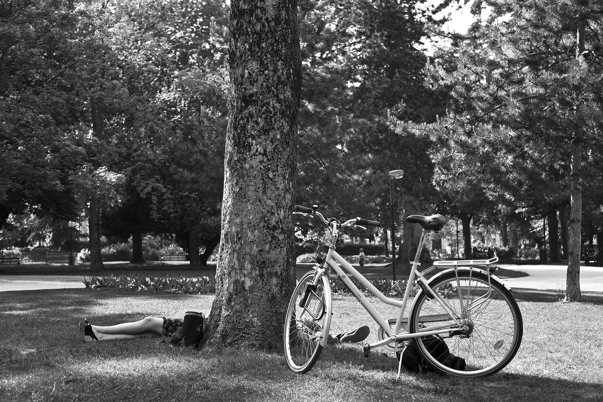 au-pied-de-l'arbre-Chambéry-mai-2011.jpg