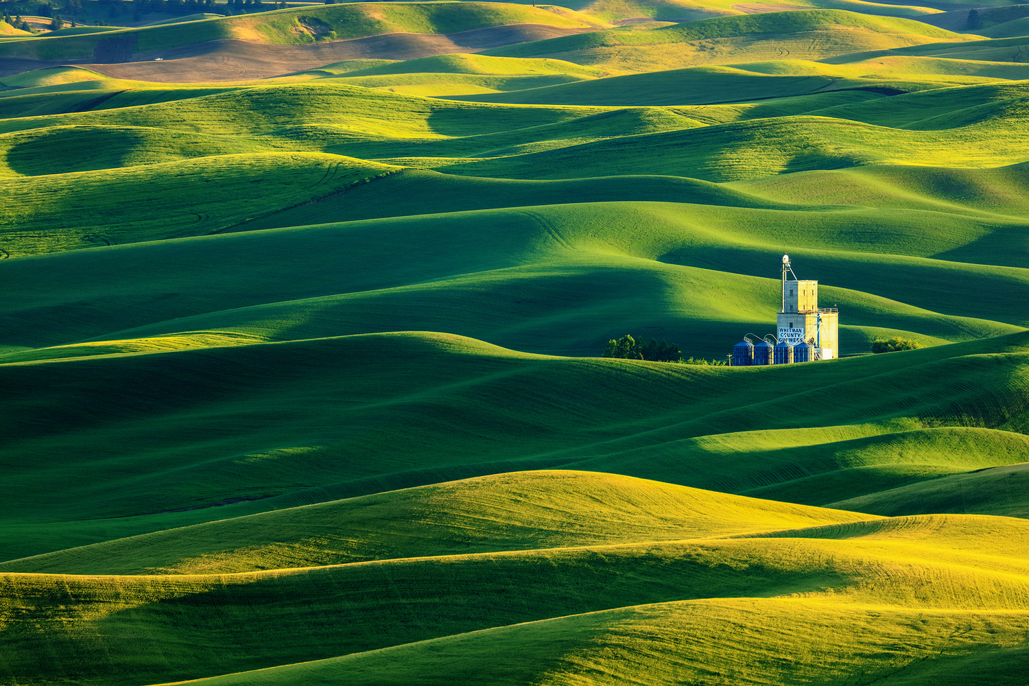 """Rolling hills, rustic barns, some more than 100 years old, along with picturesque farm towns and jaw dropping vistas are all part of what makes Palouse the """"Tuscany of the Northwest""""."""