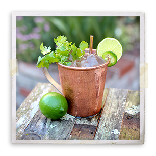 GreenChile_Mule_frame_170630.png