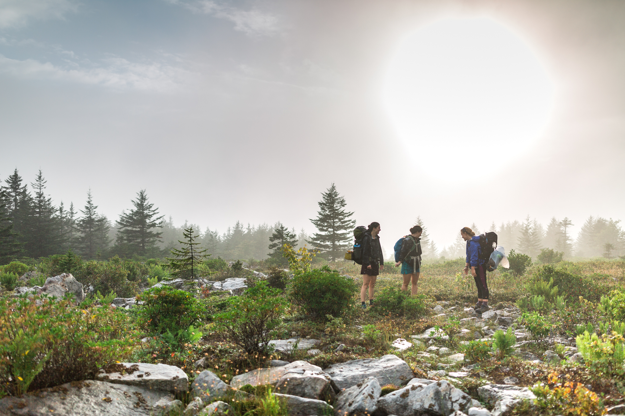 Dolly Sods West Virginia, Canaan Valley, Hiking Dolly Sods, Hiking adventure session, West Virginia photographer, West Virginia adventure photographer