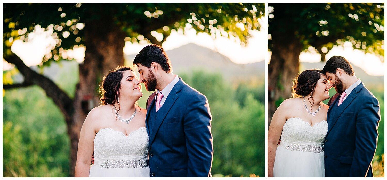 Charlottesville Wedding Photographer_0050.jpg