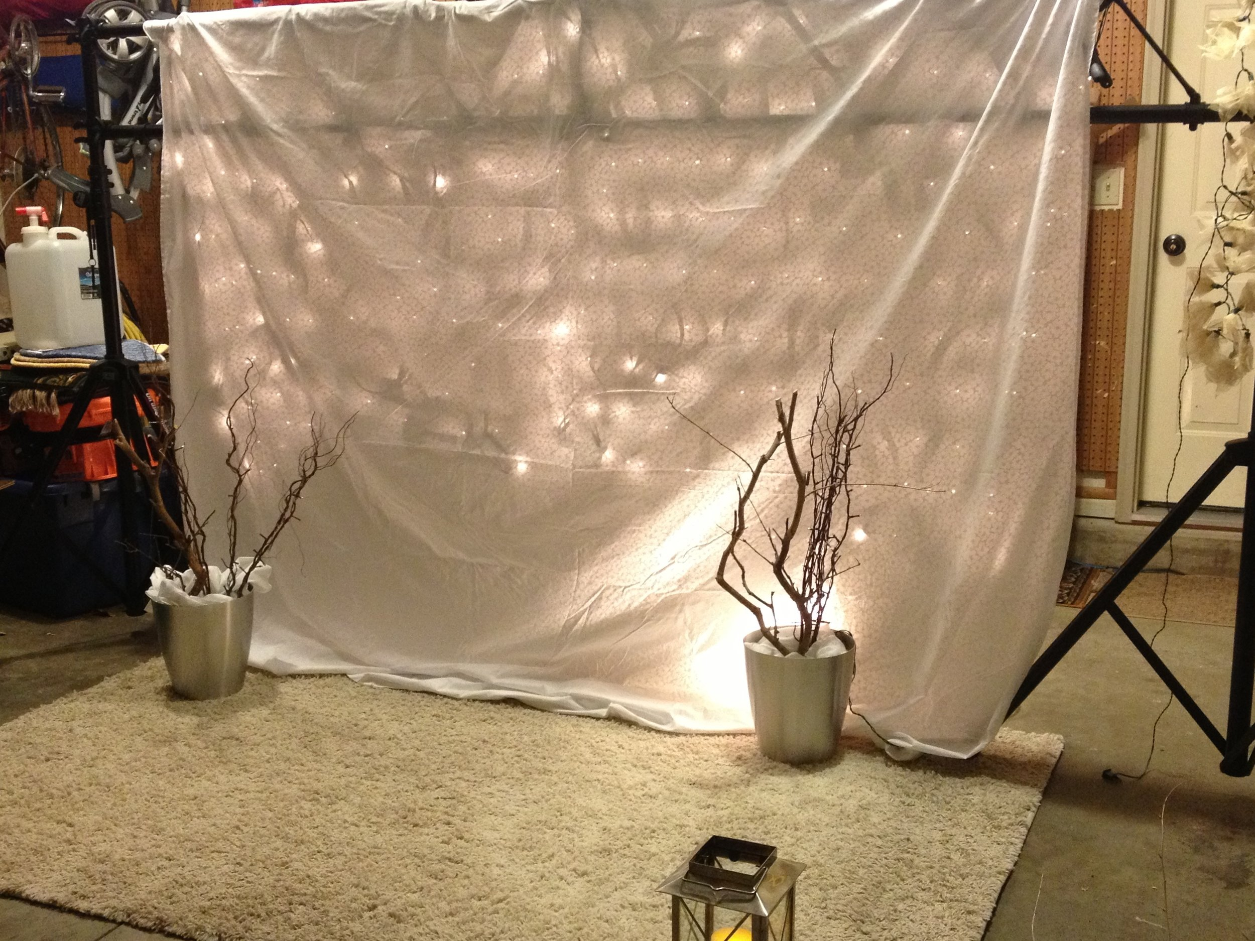 Backdrop with branches and lights.jpg
