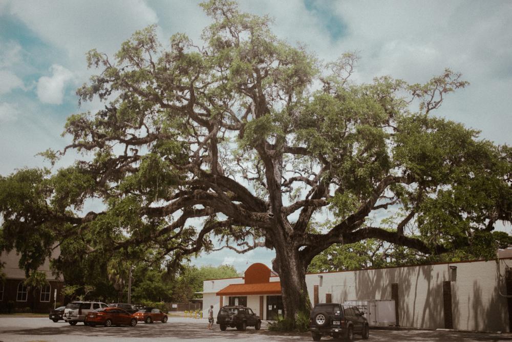 Amelia Island Wedding _ rafal bojar 050.jpg