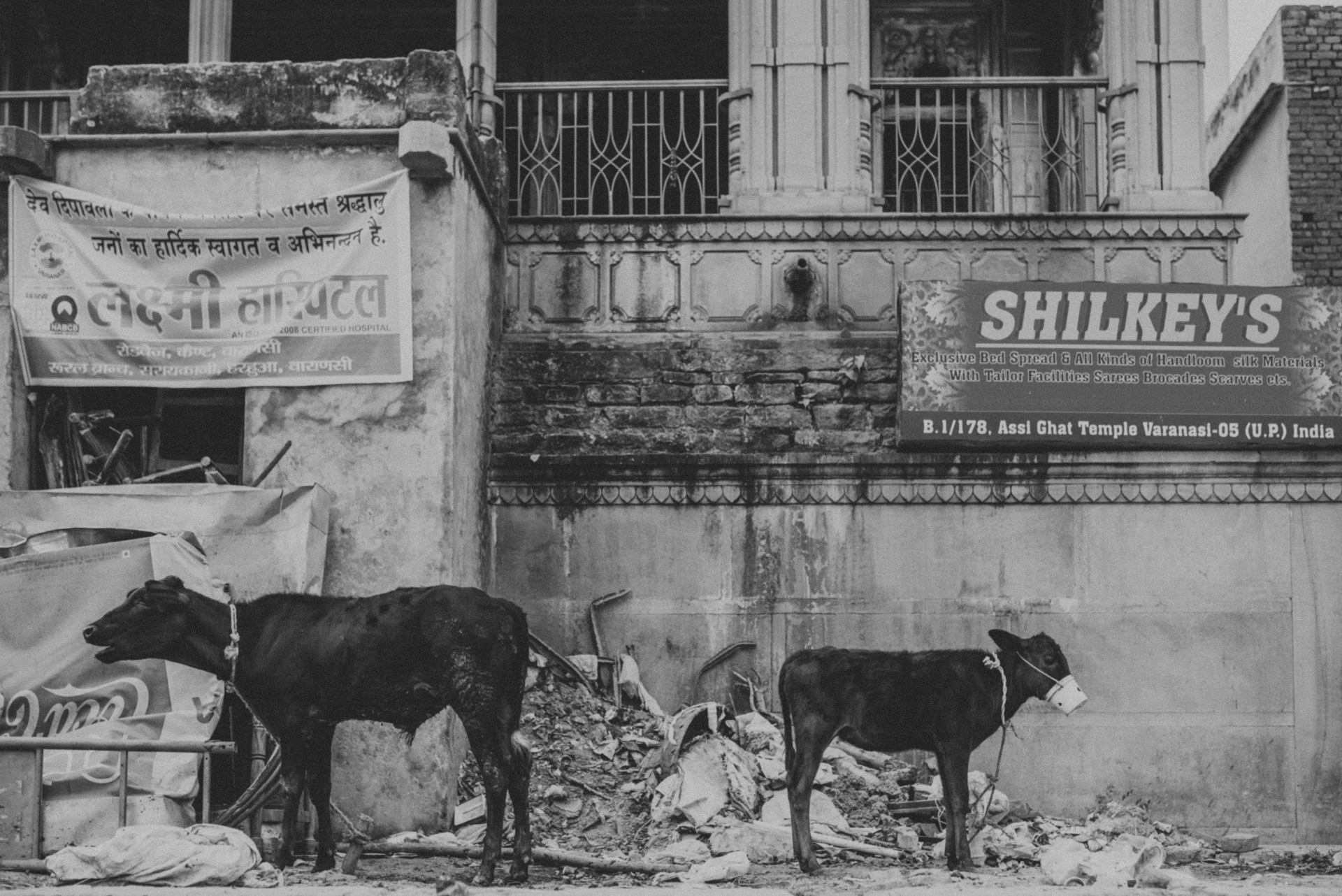 India Street Photography _ rafal bojar 079.JPG
