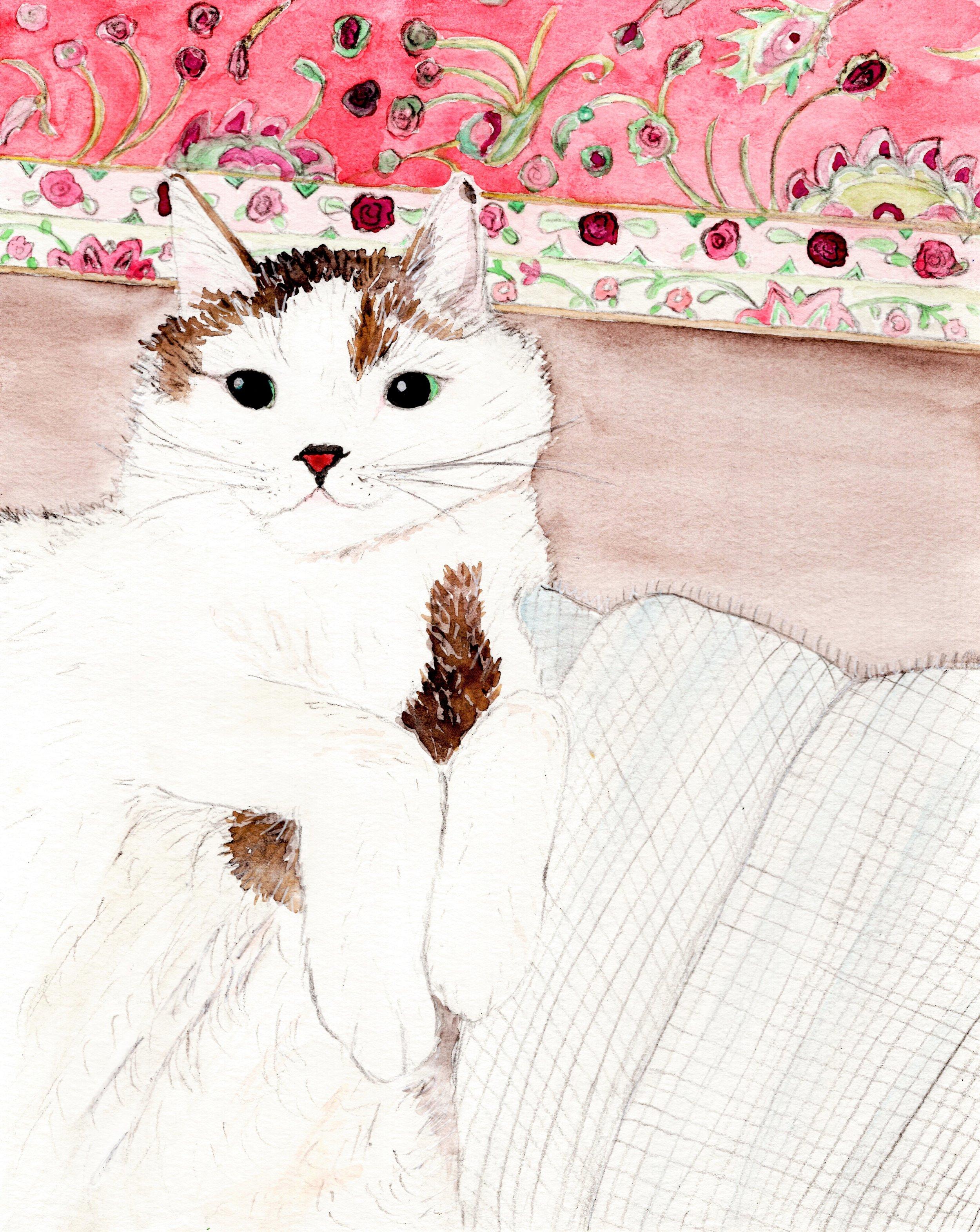janet cat portrait065 (2).jpg