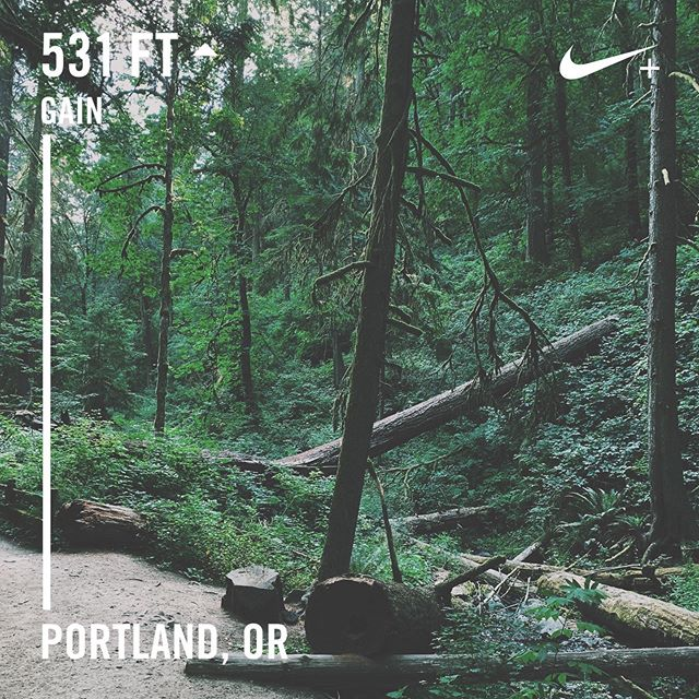 Morning runs in Oregon hit different . . . #PNW #portland #pdx #trailblazer #running #run #nikerunclub