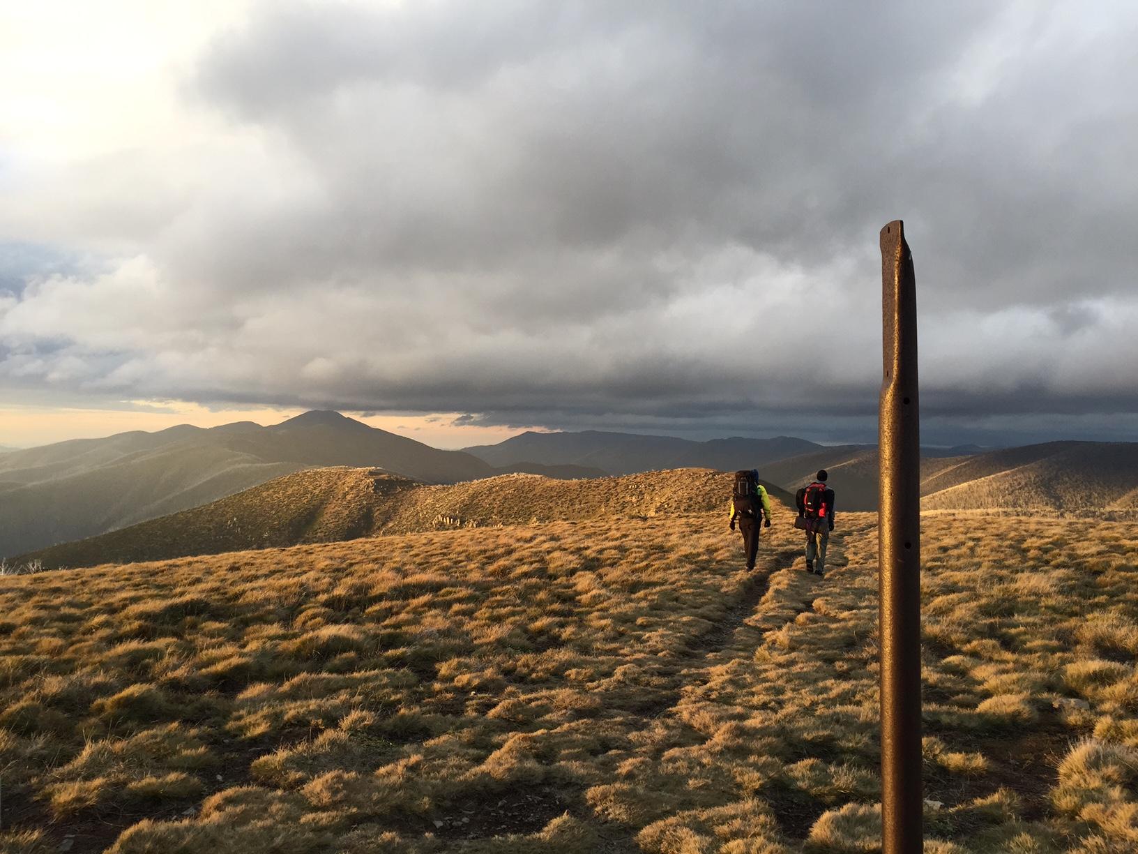 Walking to Mt Feathertop
