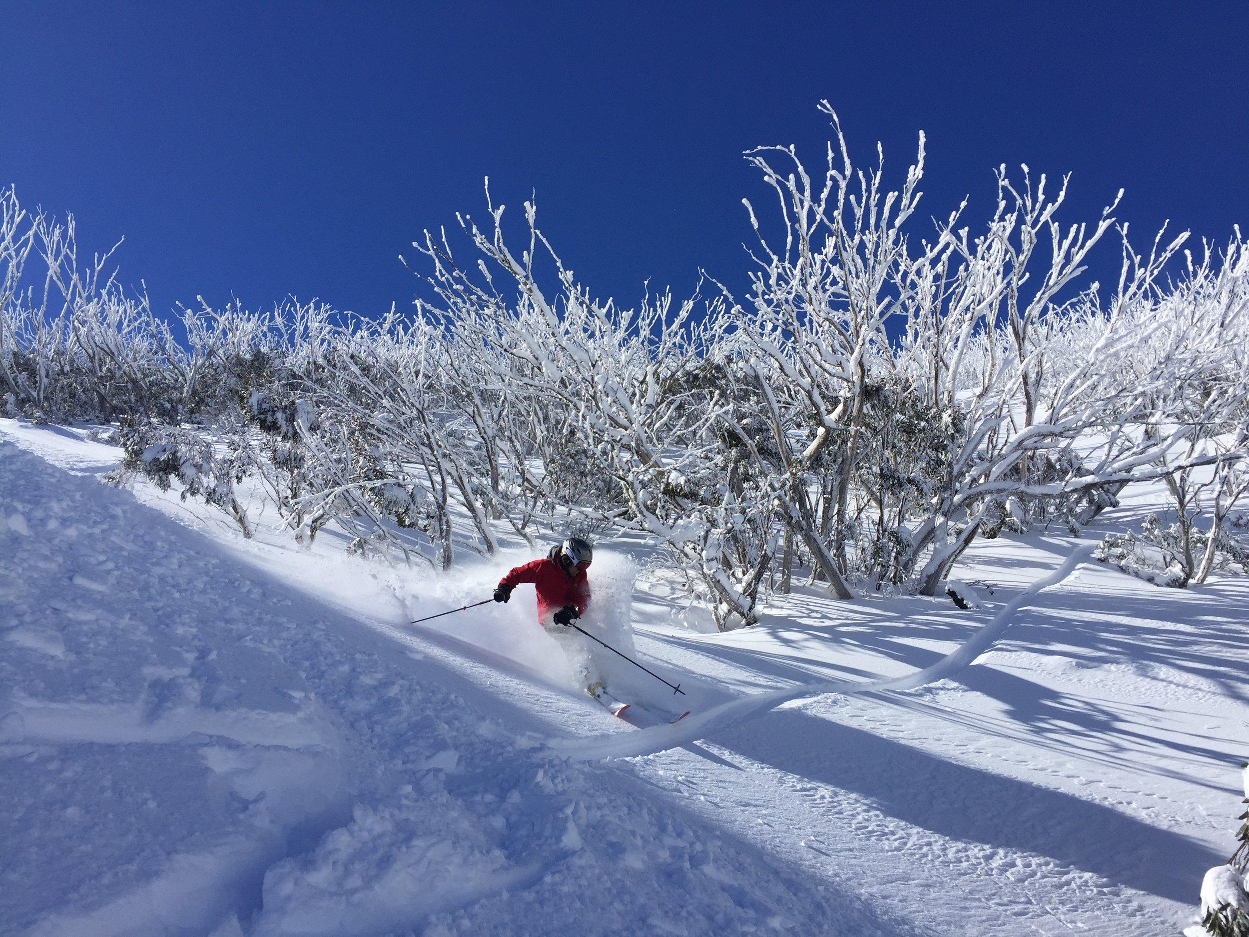 Powder day- Mt Hotham