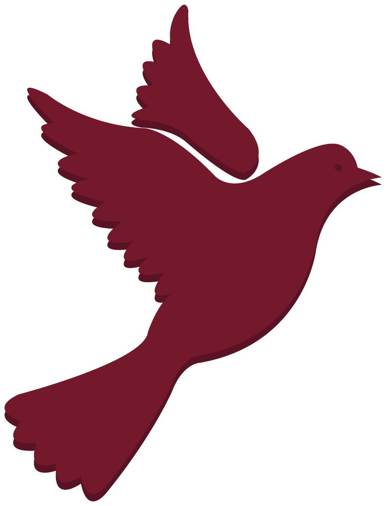 Dove-04.png