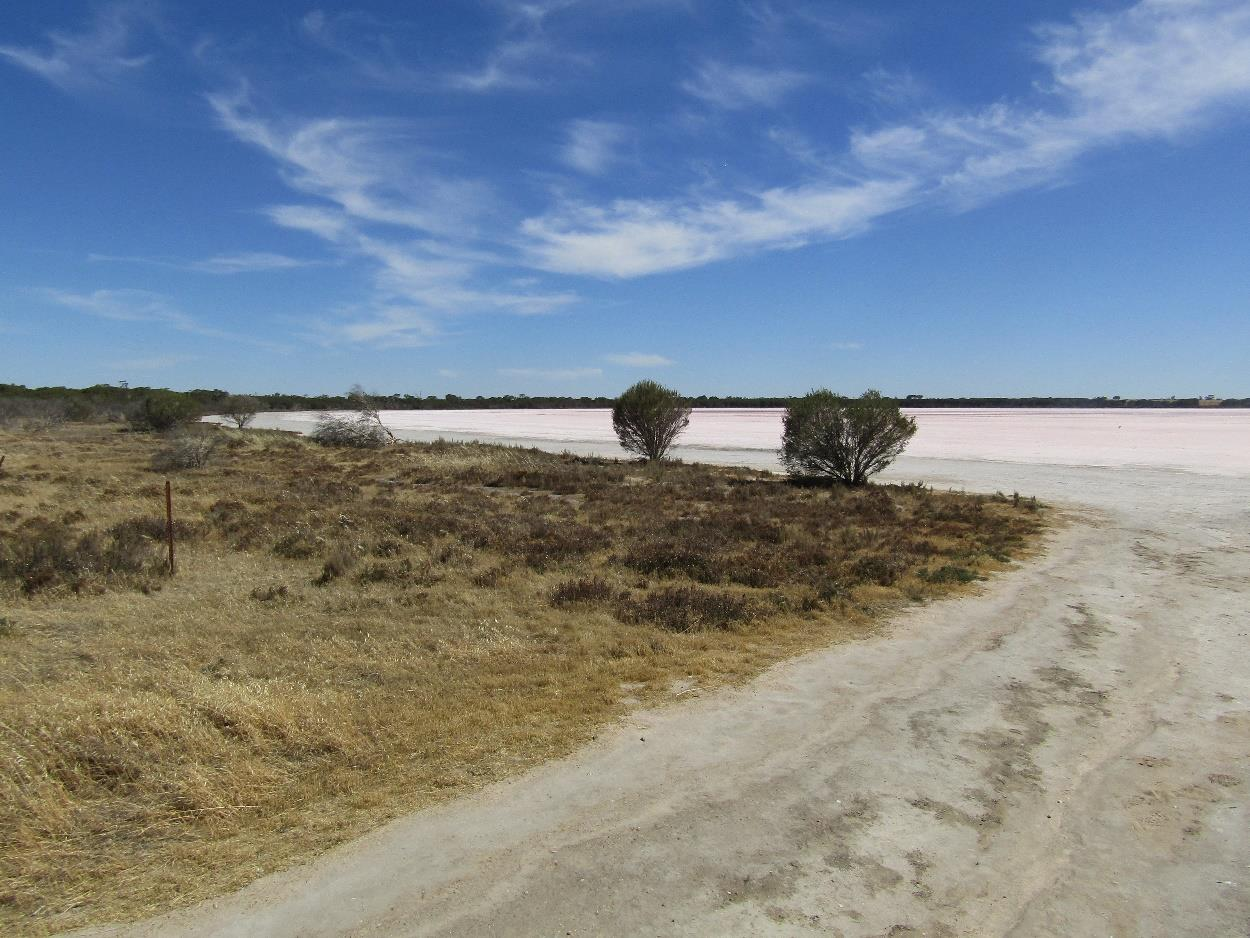 Pink Lake (not very pink this afternoon!)