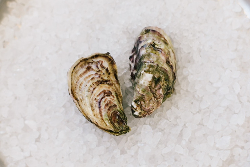Kumiai - Origin: Vizcaino Bay, Baja, CAFlavor Profile: Plump flesh with an excellent alkaline texture that stays on your palate. Briny and salty up front then transitions to a sweet and mellow cucumber aftertaste.