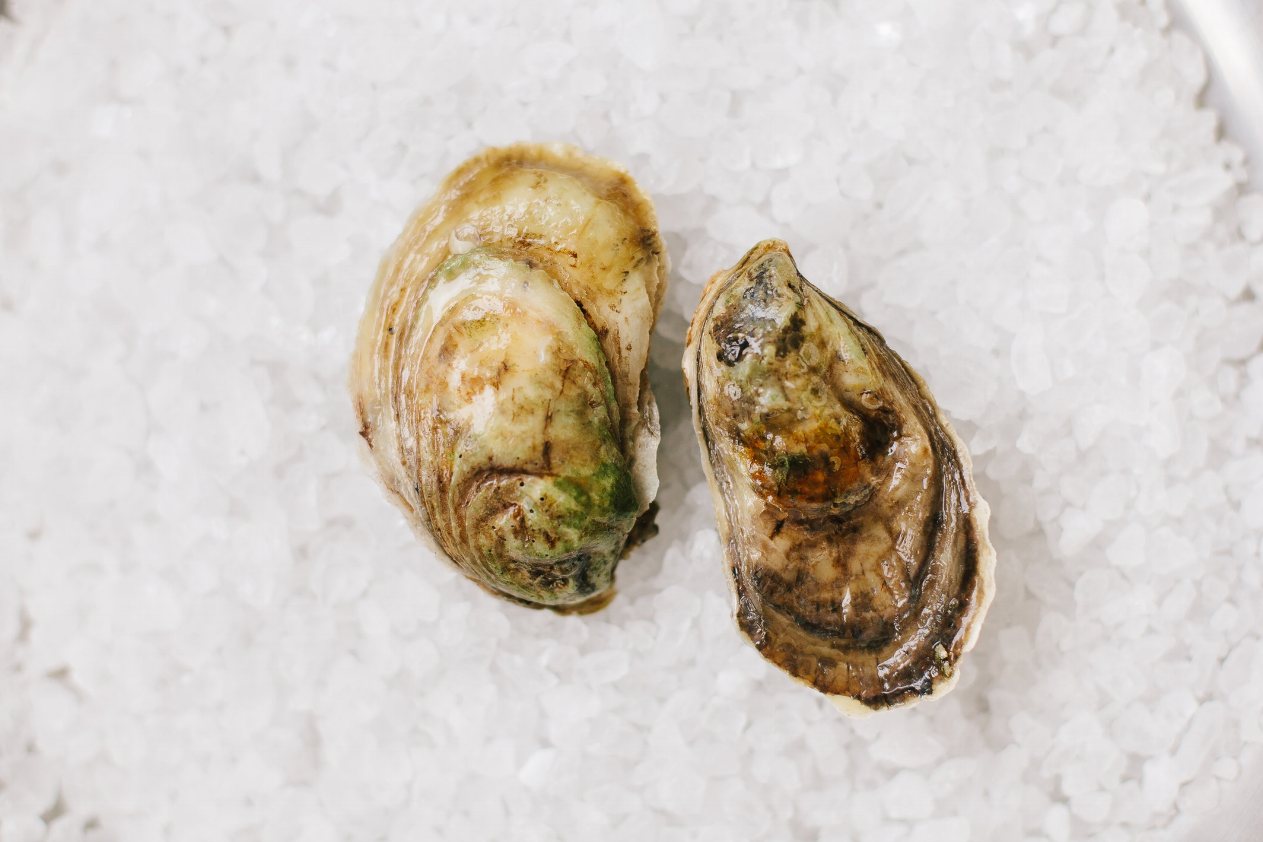 Malpeque - Origin: Malpeque Bay, Prince Edward Island, CanadaFlavor Profile: More robust flavor profile yet still easy to eat with tender meat and a nice balance between brininess and sweetness.