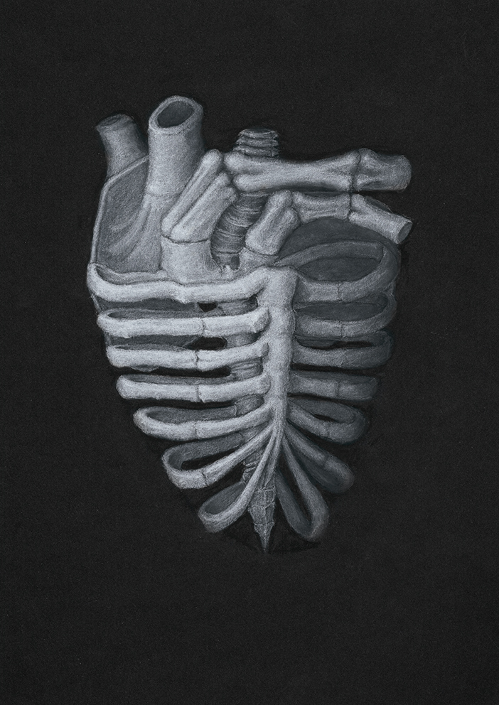 Skeleton Heart (ver. II)