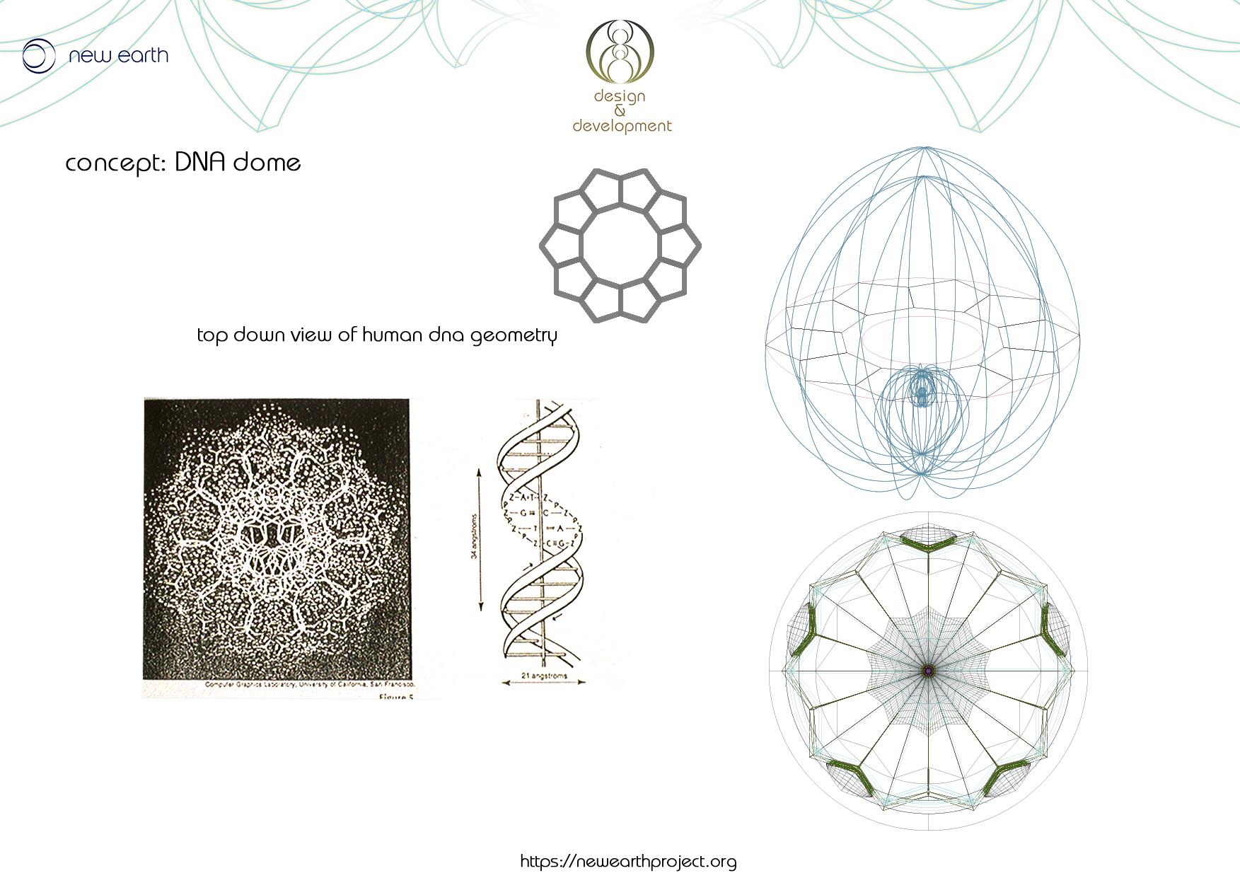 DNA dome 1..jpg