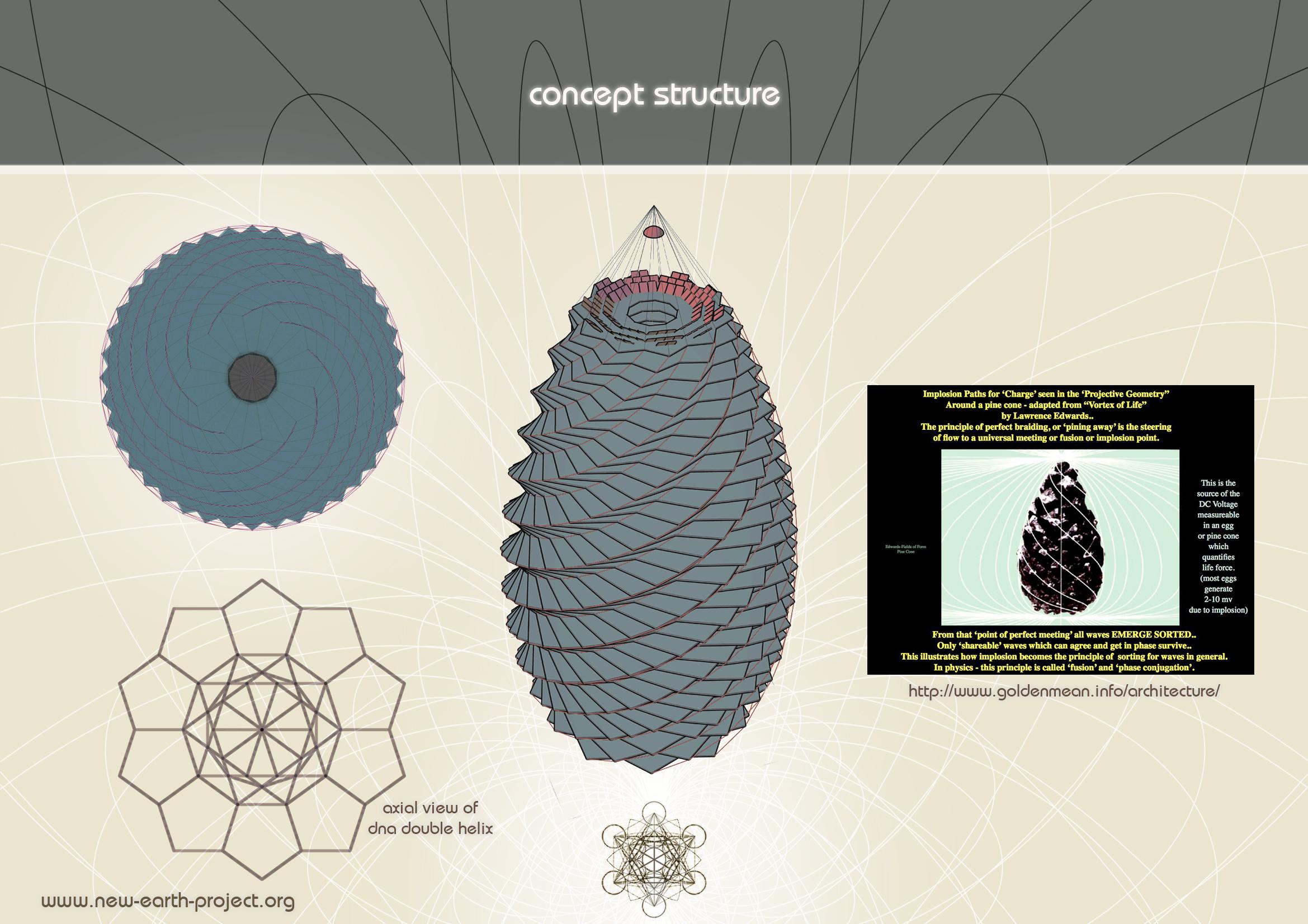 Miami project .pine cone 9.jpg