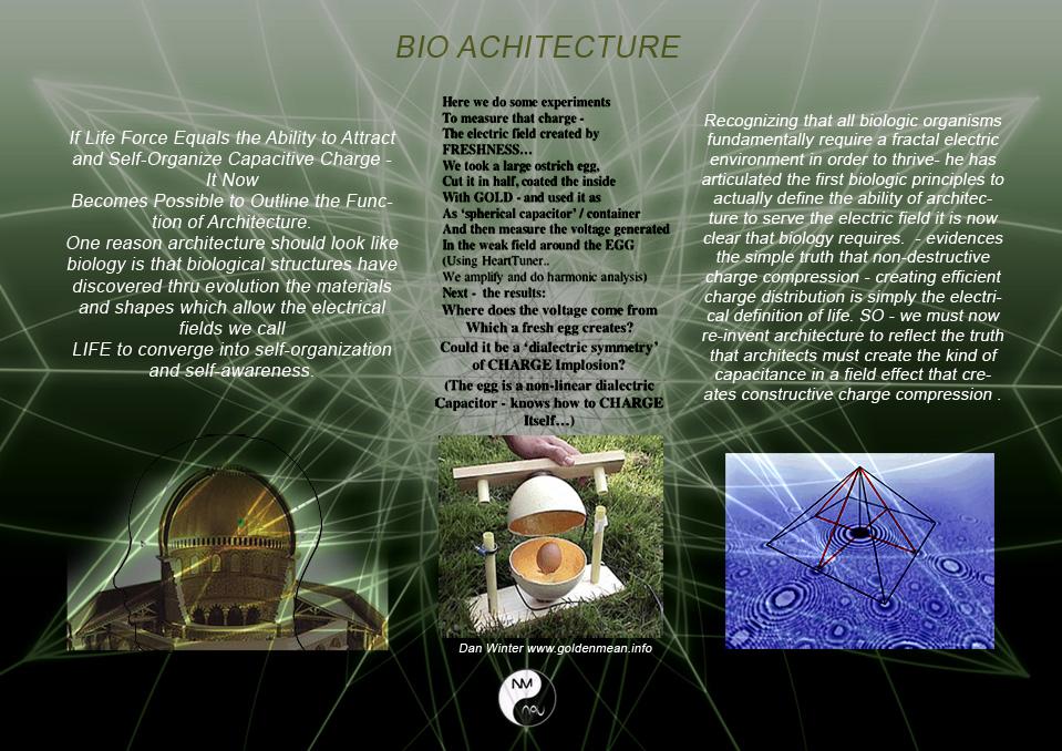 F BIO ACHITECT (3).jpg