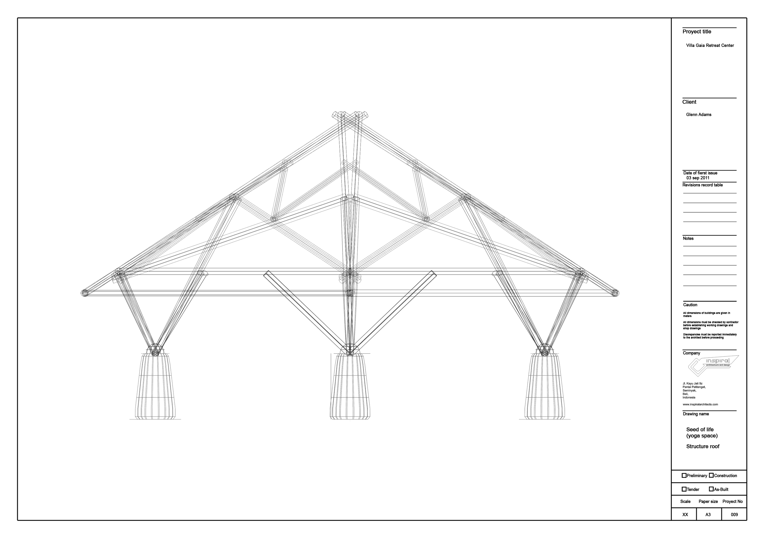 12 seed of life (yoga space)structure roof copia 3.jpg
