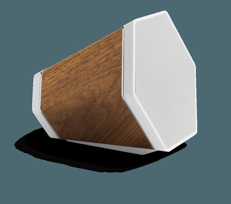 RECOVER BLUETOOTH SPEAKER -