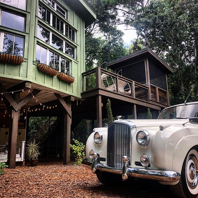 Treehouse Release Day is here! 🌳🎉We have 11 reservations available to visit this year. Click the link in our bio to book your unforgettable treehouse getaway! *Bentley not included 😉
