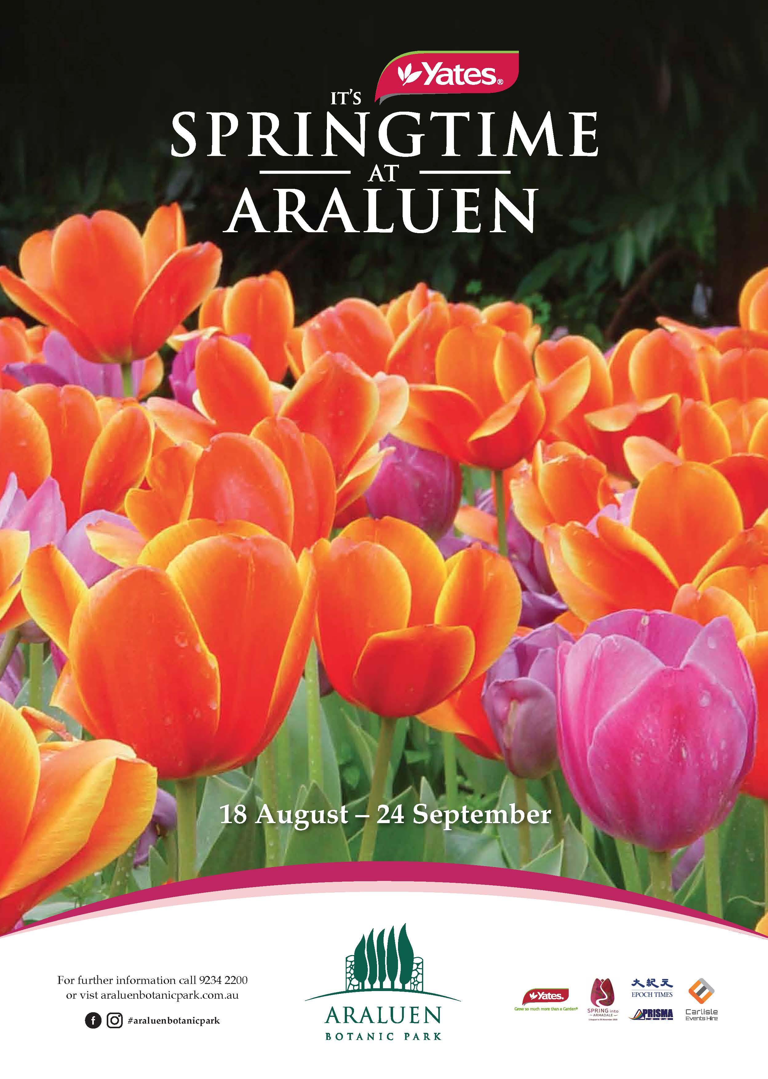ABP-Spring-Festival-18-A4-poster.jpg