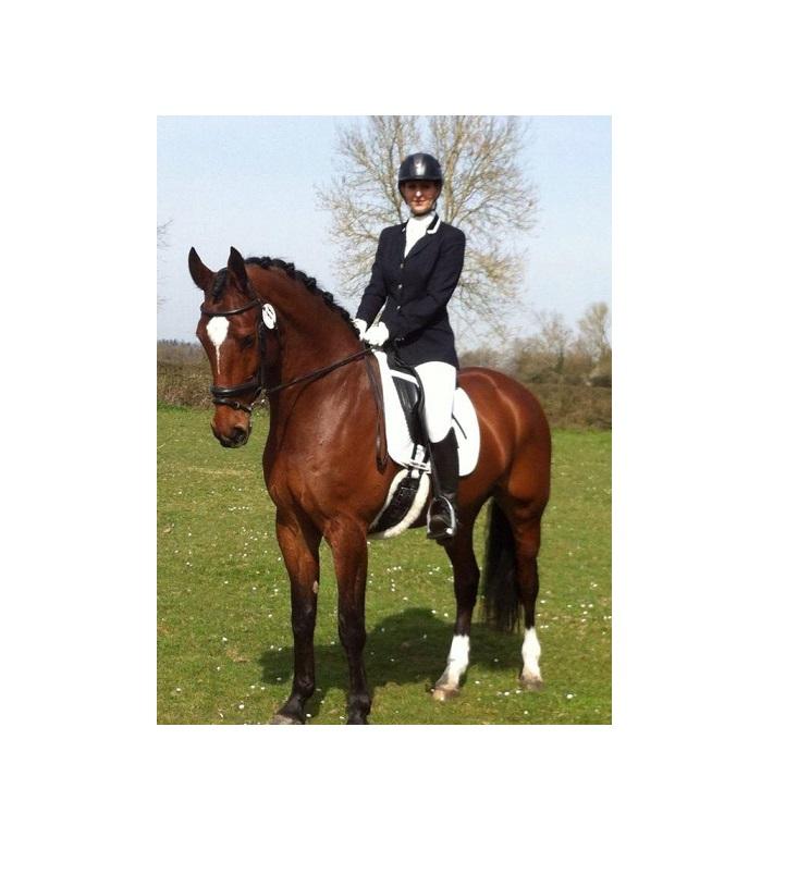 Dressage Horse osteopath