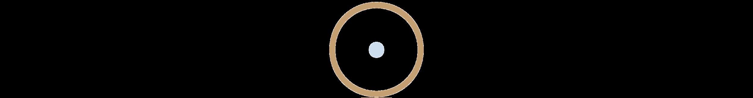 TYR-Circle-2.png