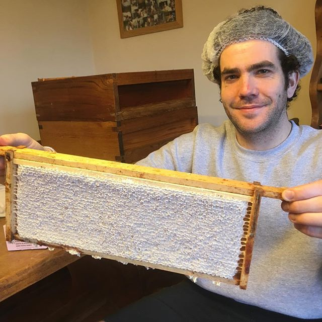 Tom Noble holding a frame of Heather Honey. Doesn't he look nice with his hair net on.