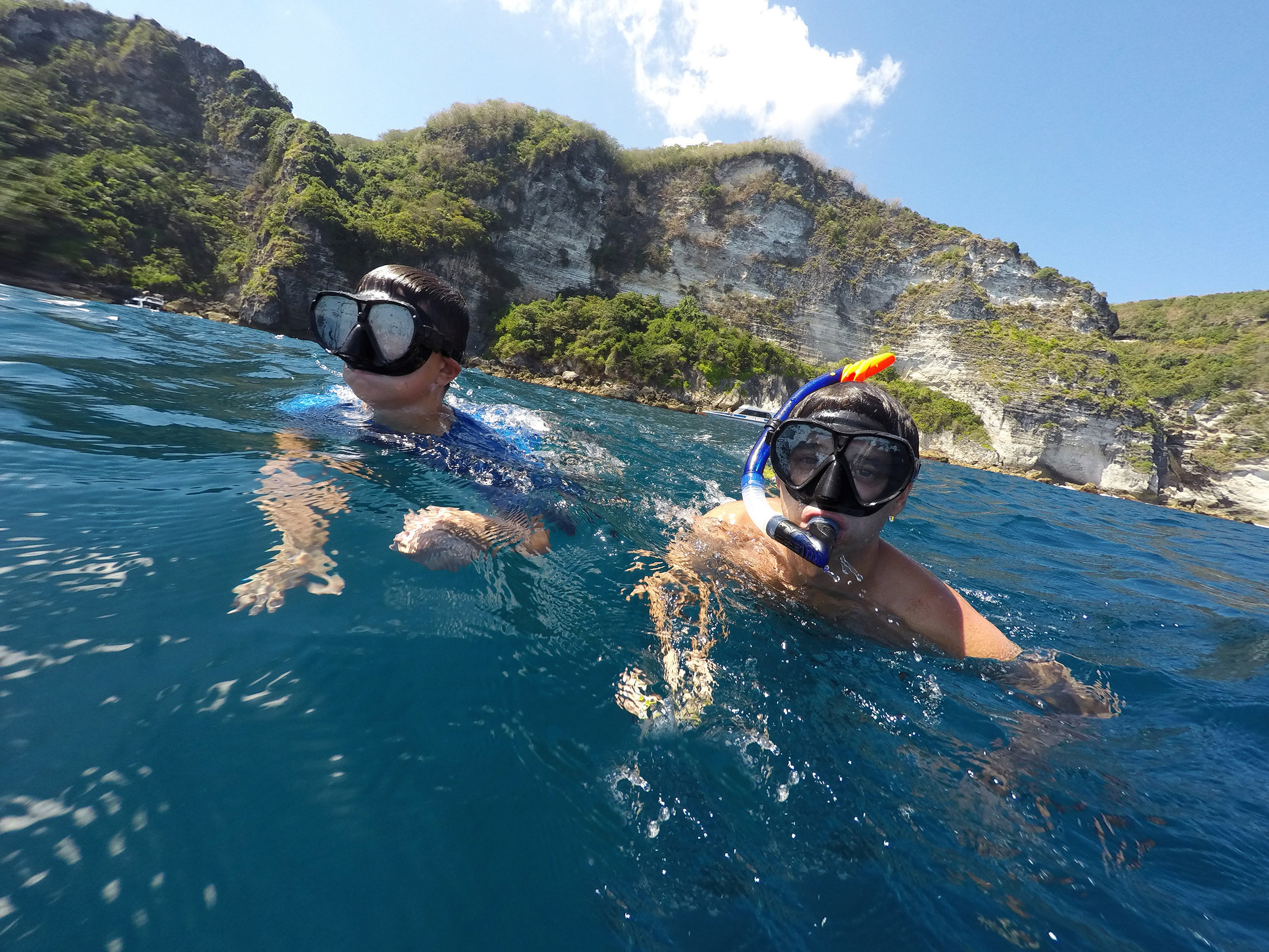 Snorkel with Dolphins - Start your recovery plan by snorkeling in the crystal clear blue waters and watching dolphins swim just feet away.