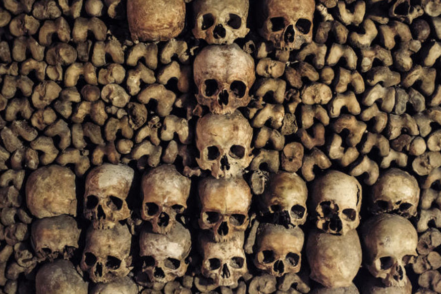 Aug 18: 12P -2P: Paris Catacombs - Below the streets of Paris lurks an entire secret history of the city's dead. On this unique storytelling tour, you'll visit the Paris Catacombs to see the remains of millions of Parisians and learn about the fascinating ways in which this ancient city has dealt with its dead. As you explore these eerie tunnels you also enjoy special access to parts of the Catacombs usually closed to the public and facts and stories from an expert local guide.Your tour starts by skipping the lines to walk directly into the catacombs. This vast, underground cemetery is composed of miles of underground tunnels lined with the skulls and bones of some 6 million Parisians. In the company of an expert guide and a small group of 19 people or fewer, explore this unbelievable city of the dead where each room reveals ever more ornate and macabre bone decorations.Along the way, hear the unbelievable story of how the catacombs were built and the massive project that was undertaken to move bones from around the city to this point. Your special-access status means the guards will also open gates just for your group, letting you into areas like a secret chapel ornately decorated with skulls and femurs.Believe it or not, the Paris Catacombs are just as much a symbol of the city as Notre Dame or the Eiffel Tower. They contain bones representing some 2,000 years of history, and their construction was a unique civil engineering project that helped give rise to the modern city.