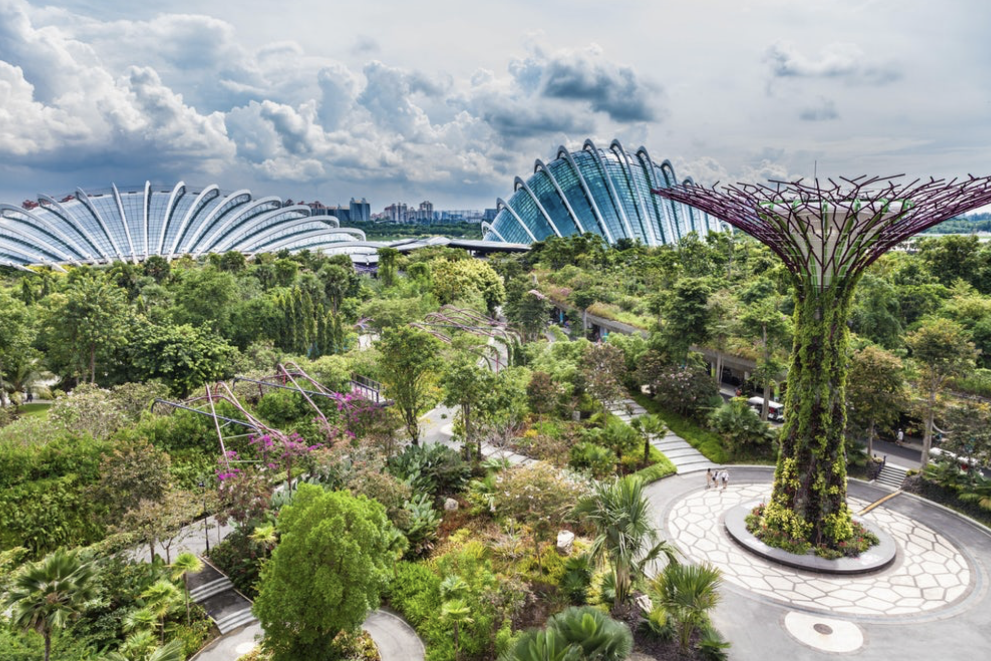 Gardens by the Bay + OCBC Skyway - $26.07/ppVisit an outstanding attraction of Singapore with the Gardens by the Bay and take a break from the pulsating life of the city. Here you will find the gardens Bay South, Bay East and Bay Central and get access to the winter gardens Flower Dome and Cloud Forest. Stroll to the newly opened Sun Pavilion and marvel at the flora and fauna from all over the world that house the gardens. On the way you will discover the largest indoor waterfall and hike in the middle of Supertree Grove.With this combination ticket you also experience the OCBC Skyway, from which you have a majestic view of Marina Bay. Soak up the tranquility and serenity of the gardens at the bay and let the mysterious, natural beauty of the vegetation, the lakes and the winter gardens take effect on you.